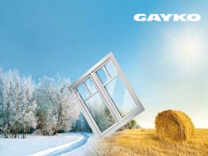gayko2
